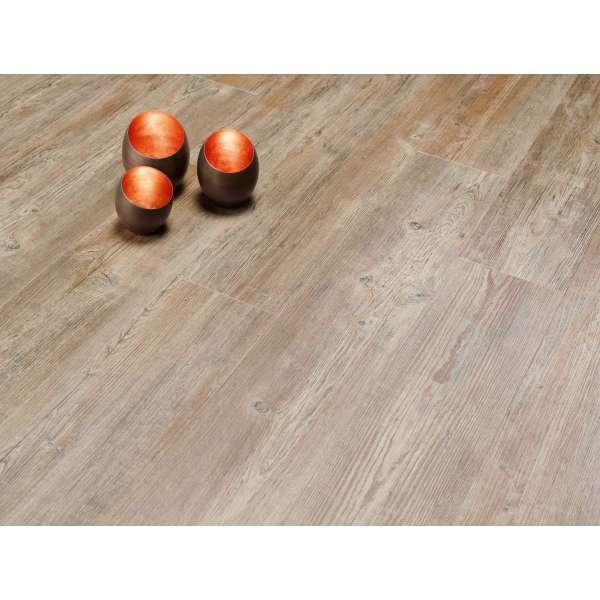 Moduleo - Transform - Latin Pine- Click - 24852 - 1