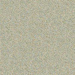 A01501 Polychrome